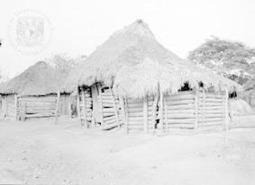 Pueblo Cora  0176.-Coras